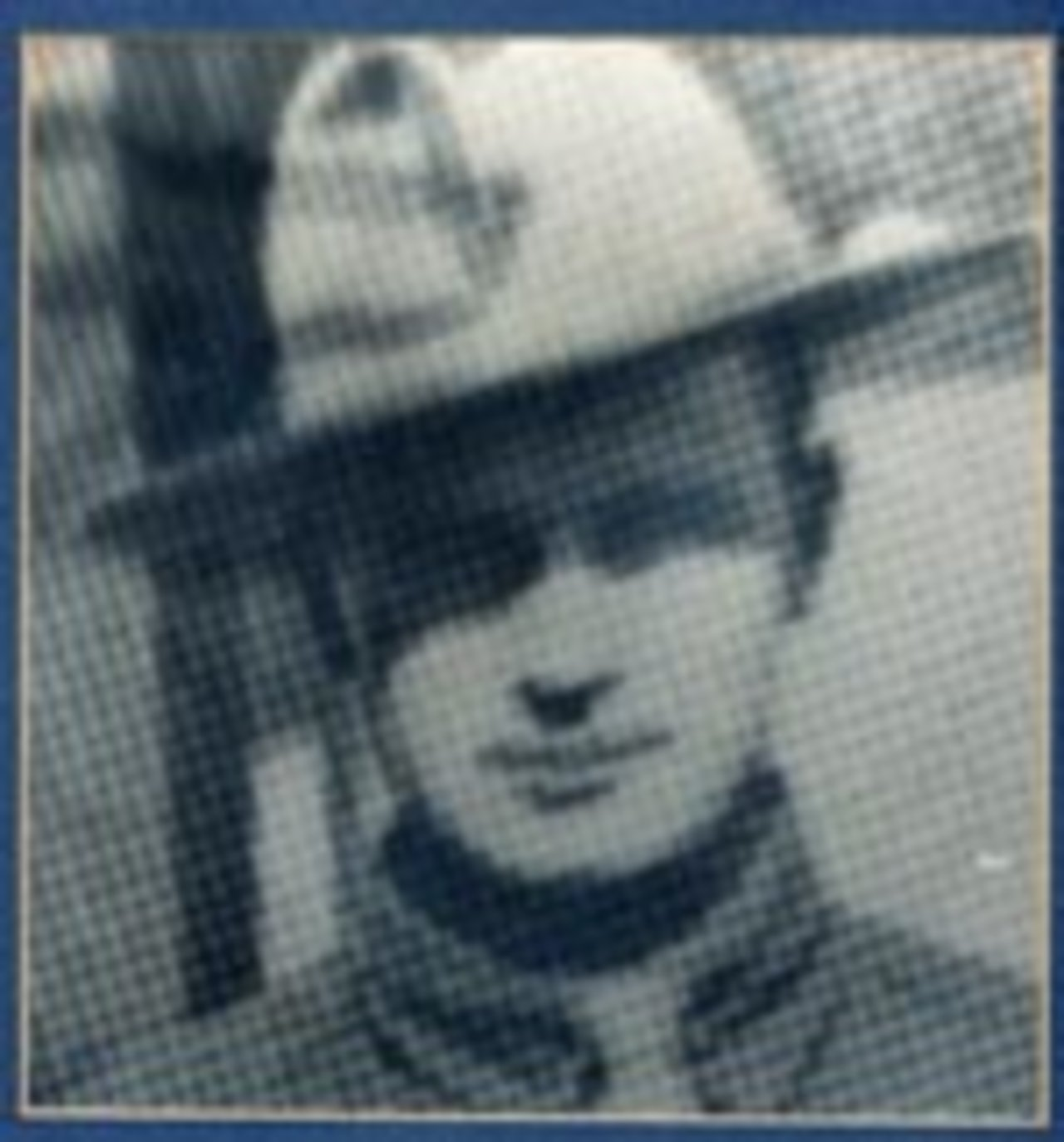 Sergeant Homer J. Harrison, 41, Commander of the Castile area of Wyoming County, died by drowning June 19, 1933. Sergeant Harrison slipped beneath the surface of Silver Lake when his small boat overturned. His body was recovered an hour later.  Sergeant Harrison joined the State Police at Batavia in September 1921 and was promoted to Sergeant and transferred to Castile in 1925.